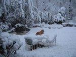 WinterStorm9.jpg